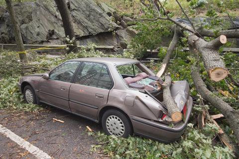 http://www.dreamstime.com/royalty-free-stock-images-car-damaged-hurricane-sandy-image27414169